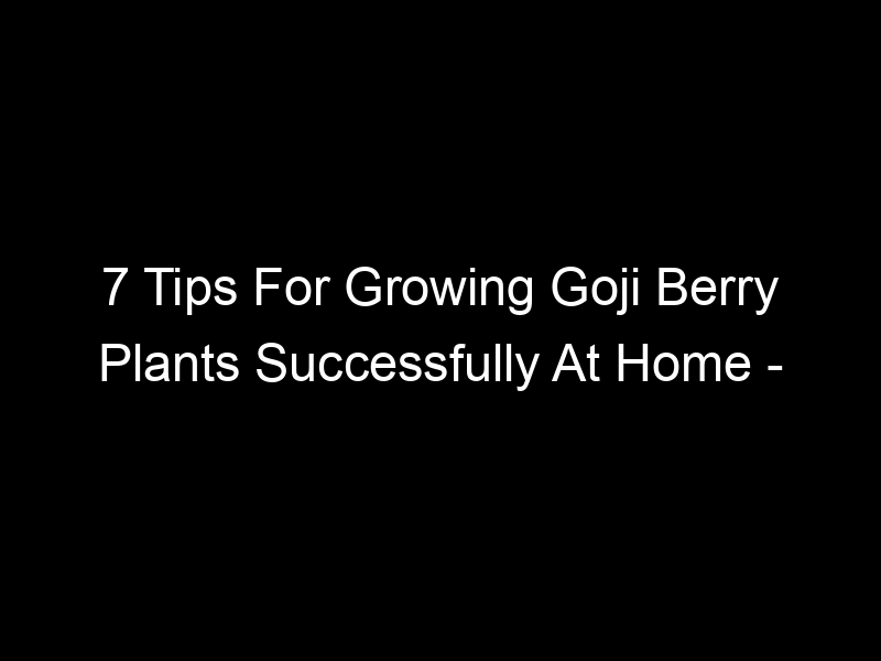 7 Tips For Growing Goji Berry Plants Successfully At Home – [Video]