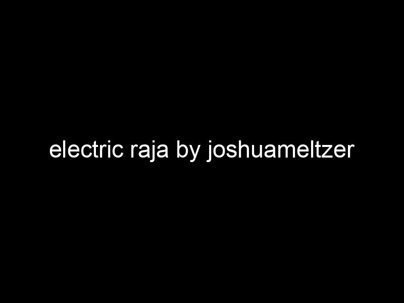 electric raja by joshuameltzer